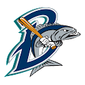 Bridgeport Bluefish icon