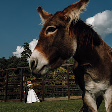 Wedding photographer Vladislav Kurochkin (Vladislavkur). Photo of 25.10.2018