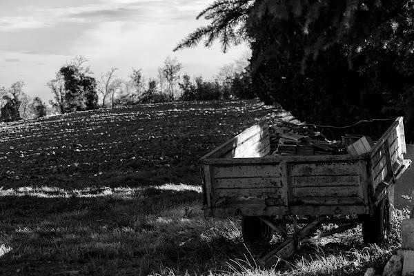 Ombre lunghe in campagna di Eraldo Taioli