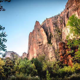 Zion by Amy Monteith - Landscapes Travel