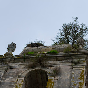 Mosteiro de Seiça by Edu Marques - Buildings & Architecture Decaying & Abandoned ( old house, old, ancient, art, architecture )