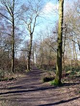Photo: Top Path near High Bank Lane. Northcliffe Wood Shipley