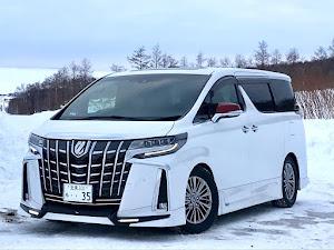 アルファード GGH35W  Executive Lounge S のカスタム事例画像 まこっち(Team's Lowgun北海道)さんの2020年02月12日08:43の投稿