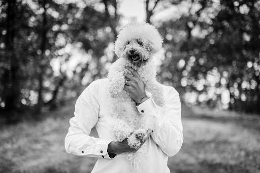 Wedding photographer Petr Wagenknecht (wagenknecht). Photo of 18.08.2019