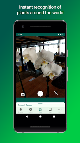 PlantSnap - Identify Plants, Flowers, Trees & More Android App Screenshot
