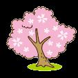 Collect Sakura