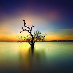 :: in the middle :: by Eddy Due Woi - Landscapes Sunsets & Sunrises ( landscape, beach )