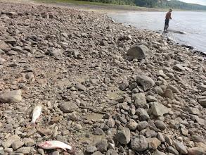 Photo: Рыбалка в Оби.