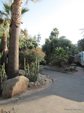 Photo: (Year 3) Day 33 -  The Rancho Los Coches RV Park #3