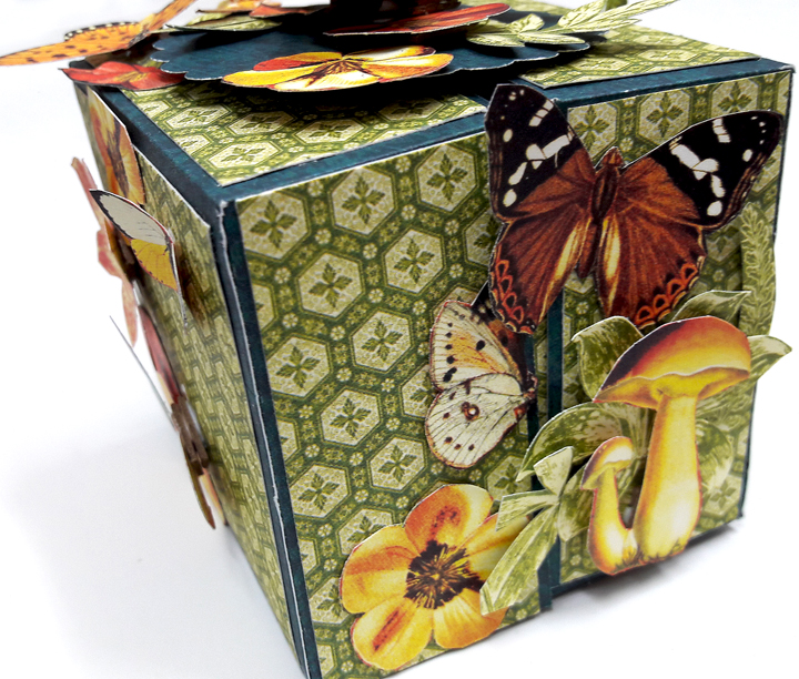 One Page Wonder Box, by Einat Kessler, Nature Sketchbook, Product by Graphic 45 photo 4.jpg