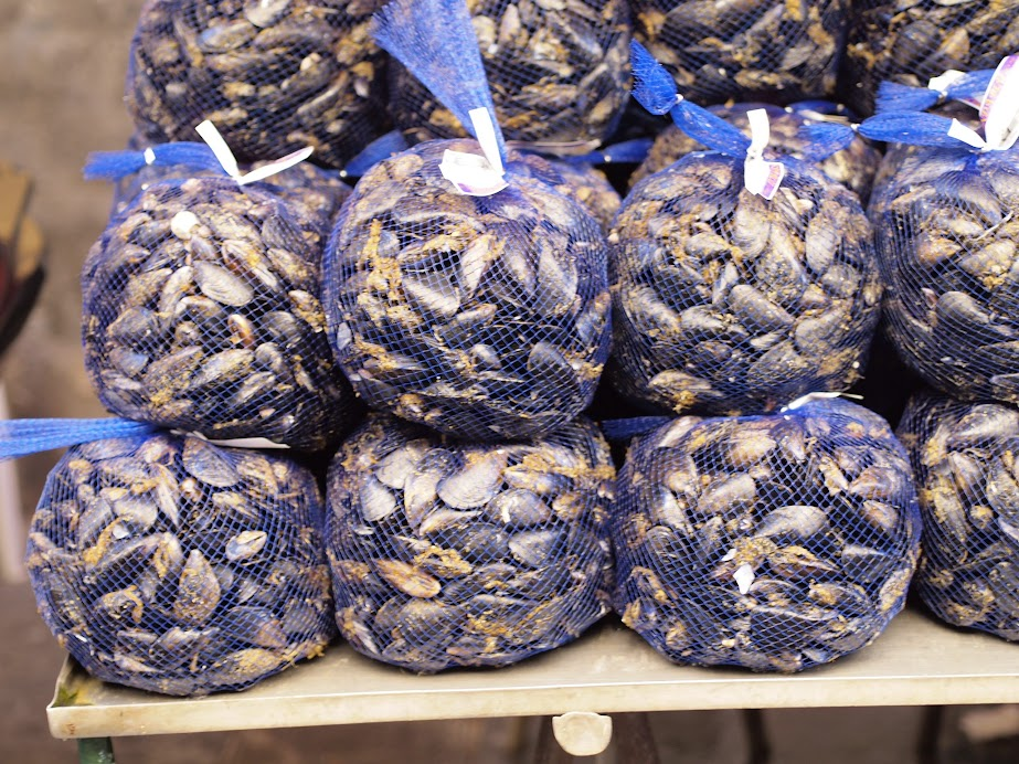 Mussels sold by bags in Ortigia market
