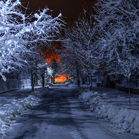winter is coming by Gabi Radoi - City,  Street & Park  Street Scenes ( winter, tree, beautiful, snow, street, white, yellow, road, freezing, incandescent, light )