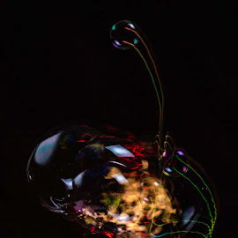 bounce by Duane Vosika - Abstract Light Painting ( nikon, color, bubble, light, long exposure, water, soap, light trail, flash )