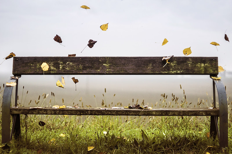 L'autunno della vita di RickTwice