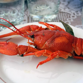 Classic Boiled Lobster.