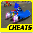 Cheat Sonic Racing Transformed icon