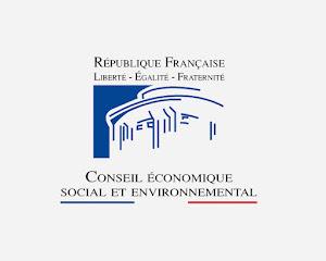 conseil-economique-et-social-et-environnementaljpg
