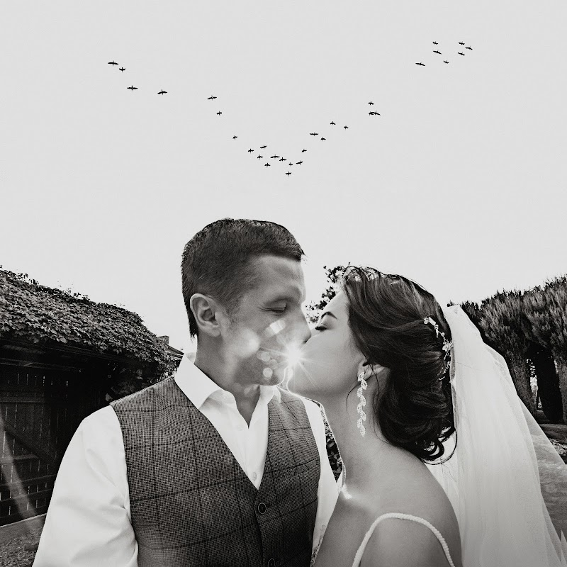 фотографы ростов на дону отзывы на свадьбу что, если таким