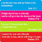 Bible Promise Box Icon