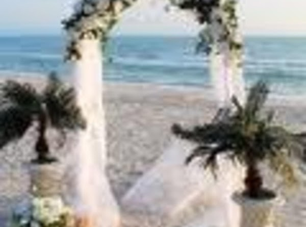 Tulle covered wedding arches can create a beautiful backdrop for cutting the cake, entering...