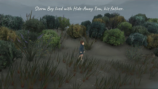 Storm Boy - screenshot