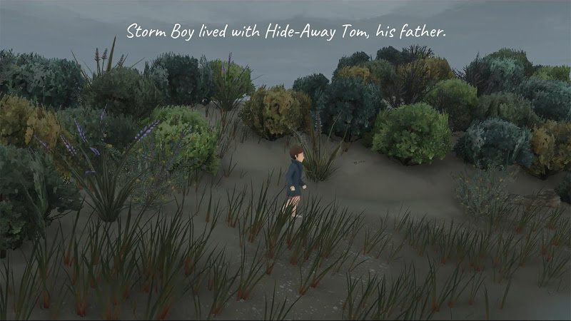 Storm Boy Screenshot 0