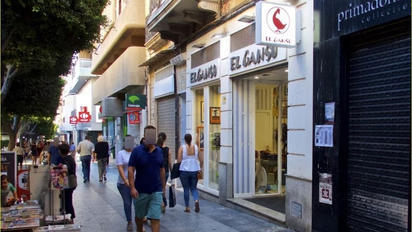 Tienda de ropa de El Ganso, en el Paseo de Almería.