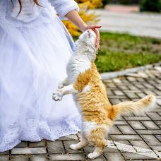 Wedding photographer Vera Bigma (BigmaVera). Photo of 05.11.2017