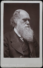 Photo: Charles Darwin in 1874, from a Woodburytype carte de visite published by John G. Murdoch. Photographer: Elliott & Fry. Copyright of image: G. W. Beccaloni