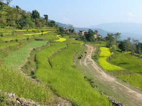 Photo: Velden in Gorkha