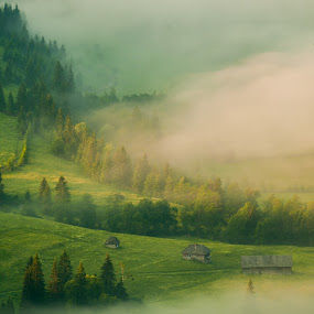 fog  by Sorin Tanase - Landscapes Prairies, Meadows & Fields ( hills, fog, green, sunrise, morning, landscape )