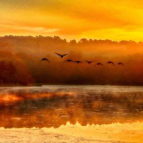 by John LeBlanc - Landscapes Sunsets & Sunrises ( mist & fog, sun rise,  )