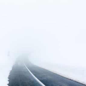 Road by Adrijan Pregelj - Landscapes Weather ( corner, fog, snow, white, road )