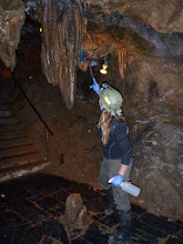 Photo: Stephanie scrubbing a formation in the first entrance area below Jacob's Ladder