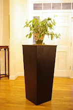 """Photo: Sculpture Pedestal Here shown with pot plant for scale. Constructed from 3/4"""" red oak plywood with red oak trim."""