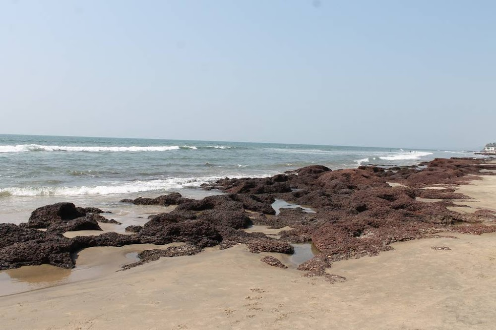morjim-best-beaches-in-goa_image