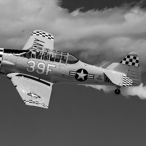 Soaring by Jim Talbert - Transportation Airplanes ( flight, sky, black and white, airplane, airshow,  )