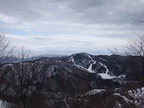 鉢伏山を見る
