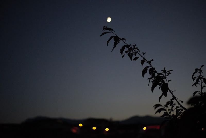 notte focata di Massimiliano zompi