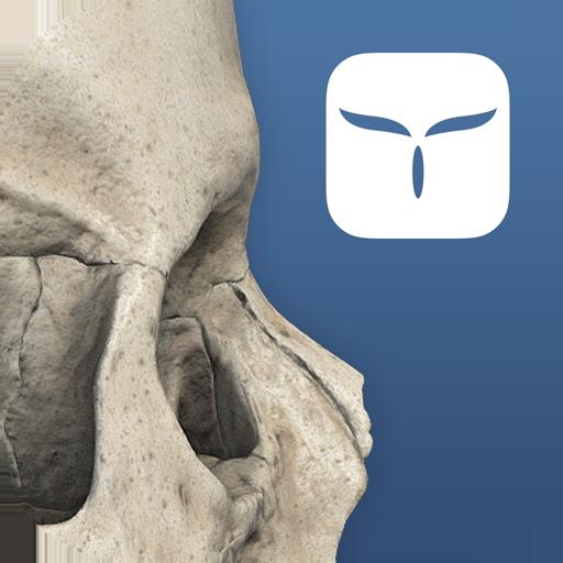 Baixar 3D Skull Atlas para Android