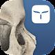 3D Skull Atlas (app)