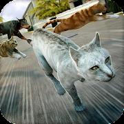 🐾 Kitten Cat Simulator Game🐾