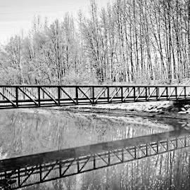 Eklutna Tail Race by Patricia Phillips - Black & White Landscapes ( alaska eklutna tail race )
