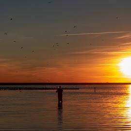 sunset fishing by Burdell Edwin - Landscapes Sunsets & Sunrises ( ocean, sunset, fishing, fisherman, lake, water,  )