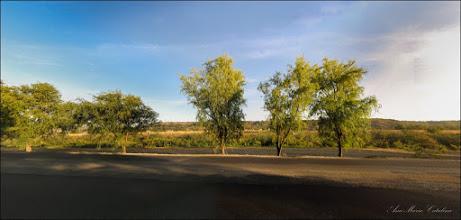 Photo: Turda - Str. Constructorilor - vedere, Râul Arieș  - 2019.09.15