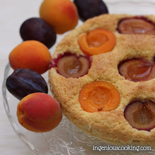 Apricot-plum Sponge Cake.