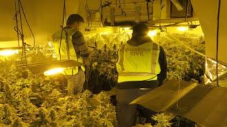 Agentes de la Guardia Civil, en una plantación de marihuana, en una imagen de archivo.