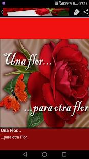Descargar Frases De Amor Con Flores Apk 2 1 Apk Para Android