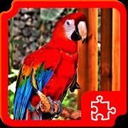 Birds Puzzles