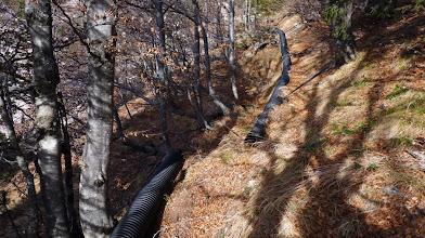 Photo: nekdo je nekaj pozabil v gozdu